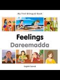 My First Bilingual Book-Feelings (English-Somali)