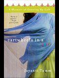 Cartwheels in a Sari: A Memoir of Growing Up Cult