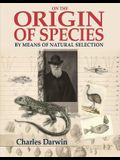 On the Origin of the Species: Slip-Cased Edition