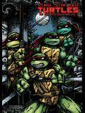Teenage Mutant Ninja Turtles: The Ultimate Collection, Volume 6