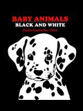 Baby Animals: Black and White