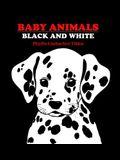 Baby Animals: Black and White