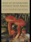 Waxcap Mushrooms of Eastern North America