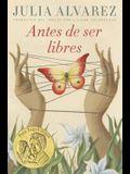 Antes de Ser Libres (Before We Were Free Spanish Edition)