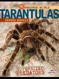 Tarantulas: Supersized Predators