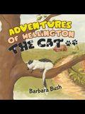 Adventures of Wellington the Cat