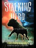 Stalking the Herd: Unraveling the Cattle Mutilation Mystery
