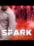 Spark Lib/E