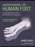 Understanding the Human Foot: An Illustrated Guide to Form and Function for Practitioners