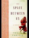 The Space Between Us (Large Print)
