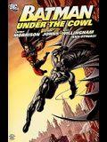 Batman Under The Cowl TP