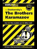 On Dostoevsky's the Brothers Karamazov
