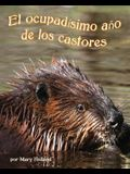 El Ocupadísimo Año de Los Castores (Beavers' Busy Year, The)