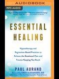 Essential Healing: Hypnotherapy and Regression-Based Practices to Release the Emotional Pain and Trauma Keeping You Stuck