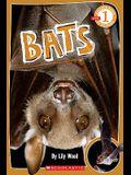 Scholastic Reader Level 1: Bats