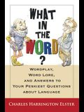 What in the Word?: Wordplay, Word Lore, and Answers to Your Peskiest Questions about Language