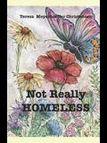Not Really Homeless