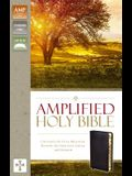 Amplified-Am: Captures the Full Meaning Behind the Original Greek and Hebrew