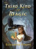 The Third Kind of Magic