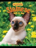 Siamese: Talk to Me!