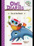 Eva at the Beach: A Branches Book (Owl Diaries #14), 14