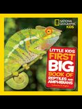 Little Kids First Big Book of Reptiles and Amphibians
