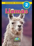 Llamas: Animals That Change the World! (Engaging Readers, Level 2)