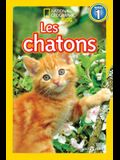 National Geographic Kids: Les Chatons (Niveau 1)