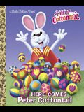 Here Comes Peter Cottontail Little Golden Book (Peter Cottontail)
