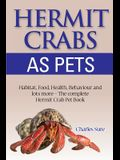 Hermit Crab Care