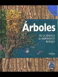 Arboles. de La Semilla Al Impontenente Bosque