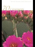 70 Common Cacti of the Southwest