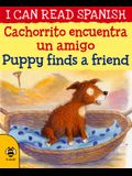 Cachorrito Encuentra Un Amigo / Puppy Finds a Friend