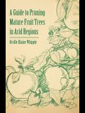A Guide to Pruning Mature Fruit Trees in Arid Regions
