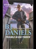 Trouble in Big Timber