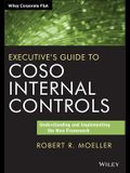 Coso Internal Controls