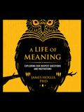 A Life of Meaning: Exploring Our Deepest Questions and Motivations
