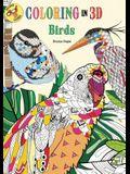 Coloring in 3D Birds