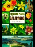 Flowering Plants of the Galápagos