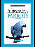 A New Owner's Guide to African Grey Parrots