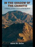 In the Shadow of the Chinatis: A History of Pinto Canyon in the Big Bend
