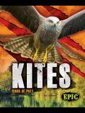 Kites: Birds of Prey