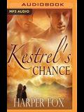 Kestrel's Chance