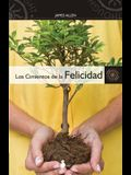 Los Cimientos de la Felicidad = Foundation Stones to Happiness and Success