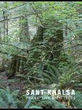Sant Khalsa: Prana: Life with Trees