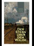 Der Stern über dem Walde: Mit psychologischem Feinsinn und großer sprachlicher Suggestivkraft beschreibt Stefan Zweig eine unwahrscheinliche Lie