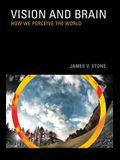 Vision: How We Perceive the World