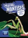 Praying Mantises: An Augmented Reality Experience