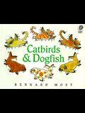 Catbirds & Dogfish