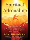 Spiritual Adrenaline: A Lifestyle Plan to Nourish and Strengthen Your Recovery